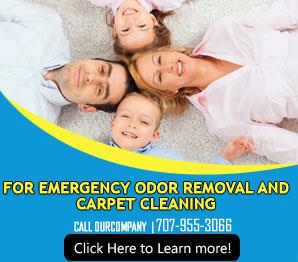 Our Infographic | Carpet Cleaning Benicia, CA